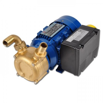 Selfpriming reversible pump EP NAUTIC